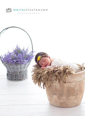 Portofoliu sedinte foto nou nascuti
