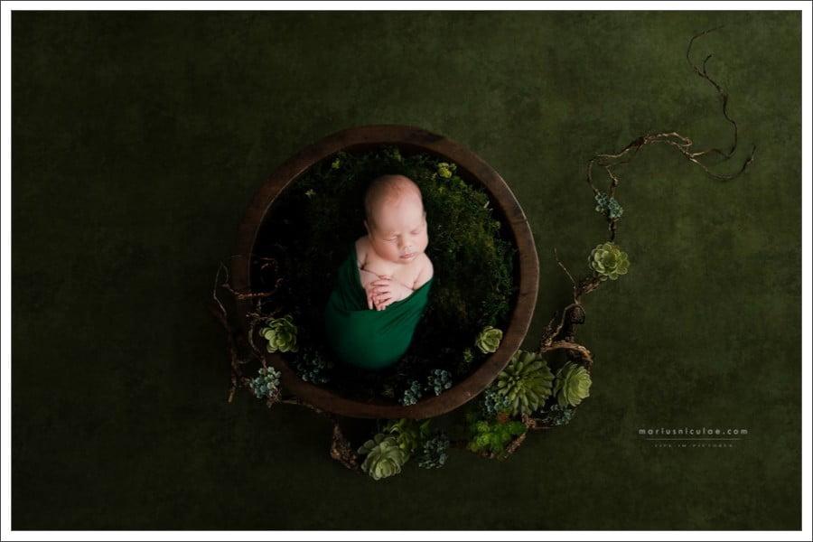 sedinte foto nou nascut